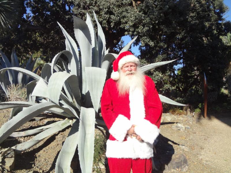 Santa and agave