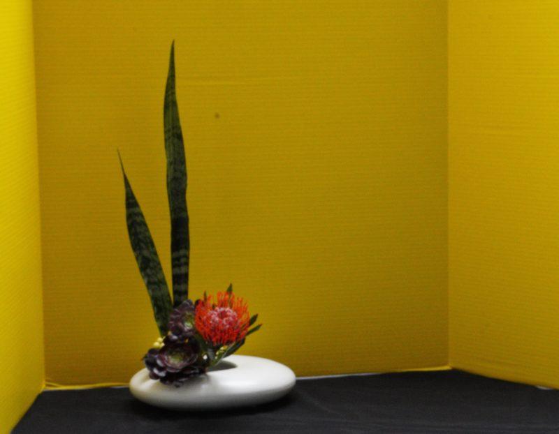 Japanese flower arrangement in white vase