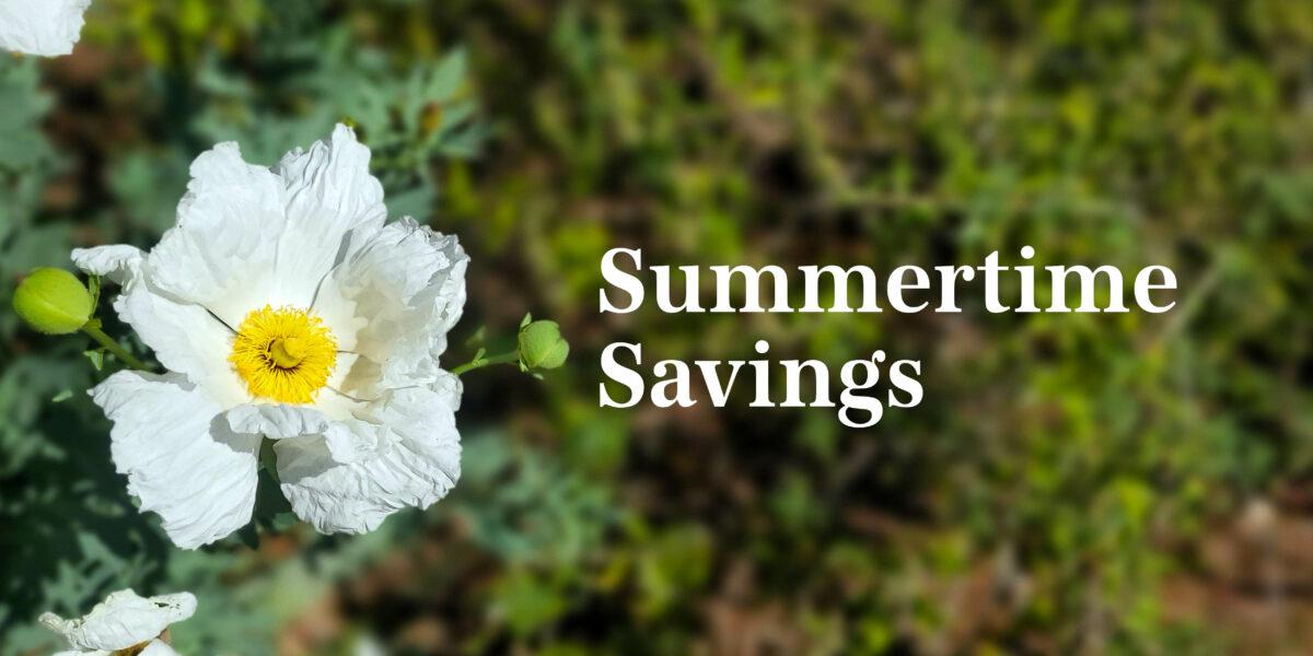 Summertime Savings june offer poppy
