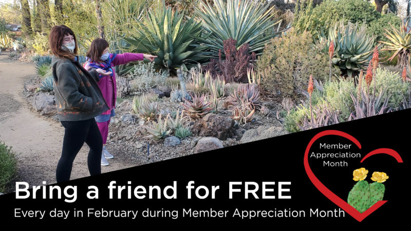 Member Appreciation Month - Bring a friend to the Garden