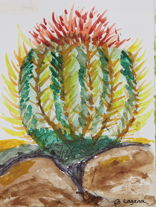 watercolor painting of a green round golden barrel cactus with yellow thorns