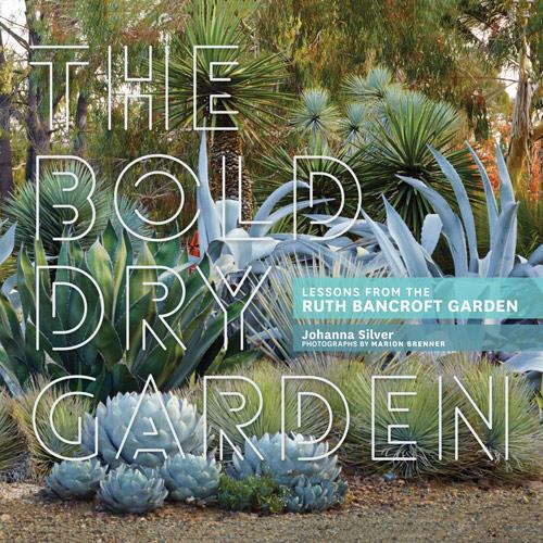 The Bold Dry Garden The Ruth Bancroft Garden Nursery