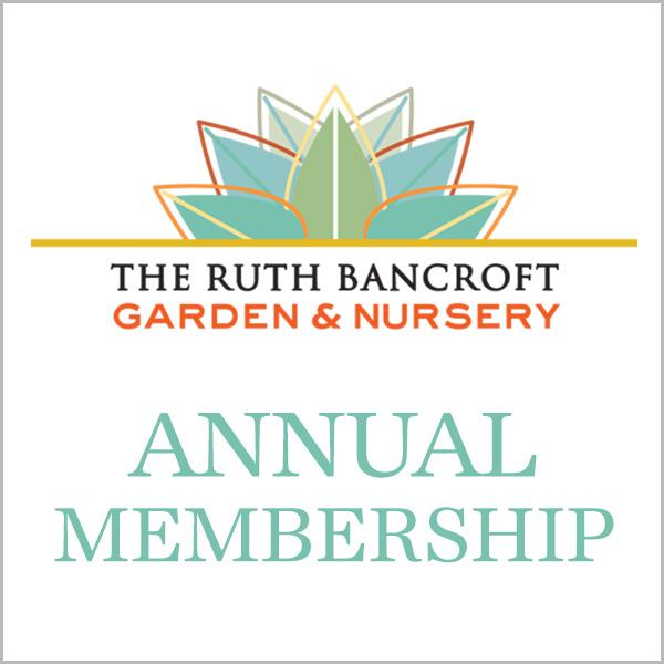 Photographer's Membership (Auto-renewing)