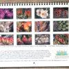 garden calendar 2021 back