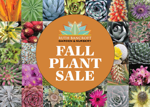 2019 Fall Plant Sale card