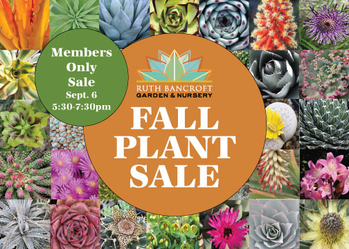 Fall plant sale postcard