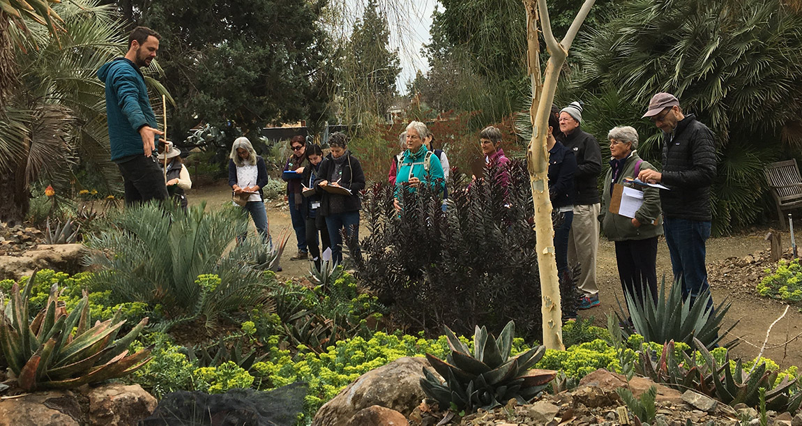 a group of people stand in the paths at the ruth bancroft garden, taking notes during an enrichment training. overcast skies and succulents and drought tolerant plants